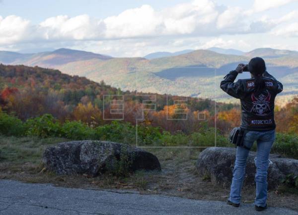 Una herramienta europea mejorará la gestión y la rentabilidad de los bosques