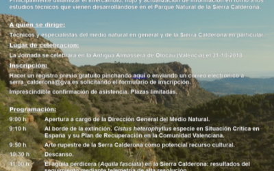Workshop: Natural Park Sierra Calderona