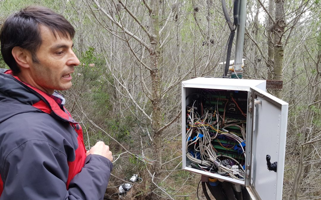 LIFE RESILIENT FORESTS receives visit of the project monitor from the European Commission