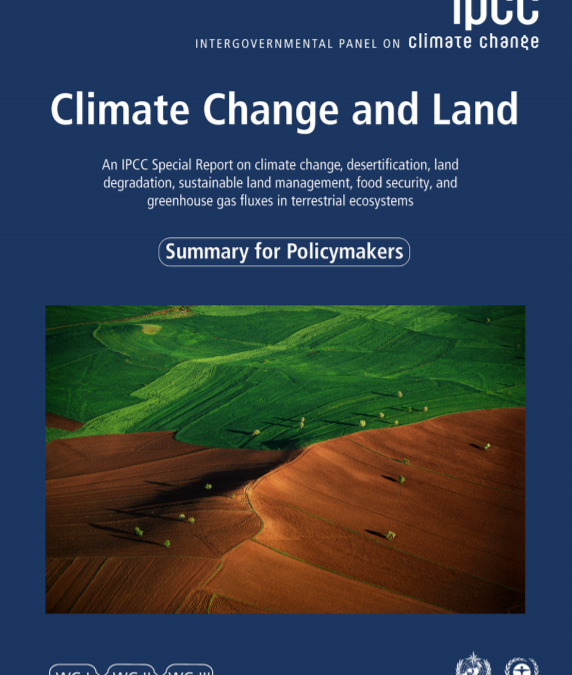 IPCC study highlights the role of sustainable forest management for climate adaptation