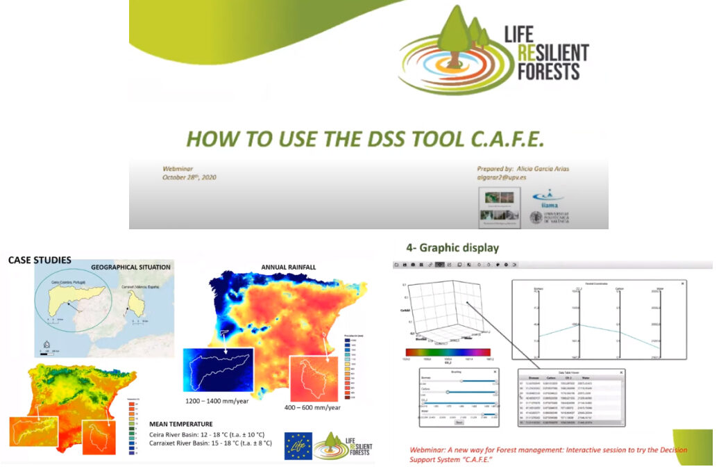 How to better manage your forest? The second RF webinar