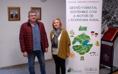 Workshop: Sustainable forest management as booster of rural economy
