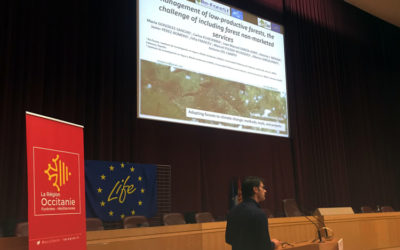 RESILIENT FORESTS  activities presented at  International Symposium on Climate Change and Forests