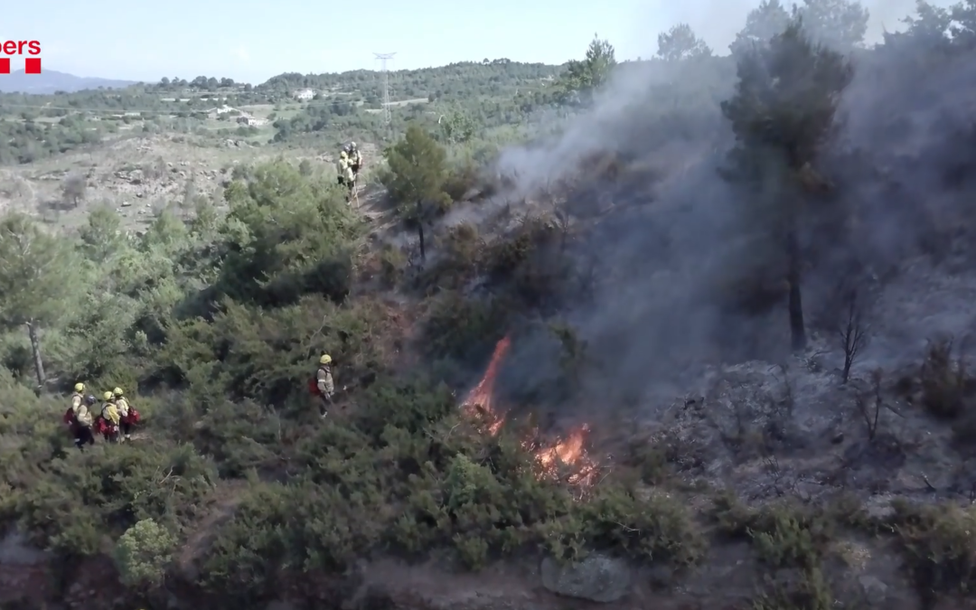 How to manage forest wildfires – Resilient Forests Coordinators featured in documentary by Spanish El Pais